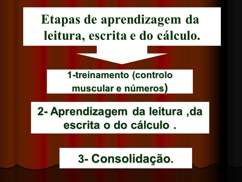 1-treinamento (controlo muscular e números ) 2- Aprendizagem da leitura,da escrita o do cálculo. 3- Consolidação. Etapas de aprendizagem da leitura, e