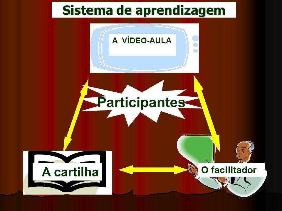 Participantes A VÍDEO-AULA A cartilha O facilitador Sistema de aprendizagem