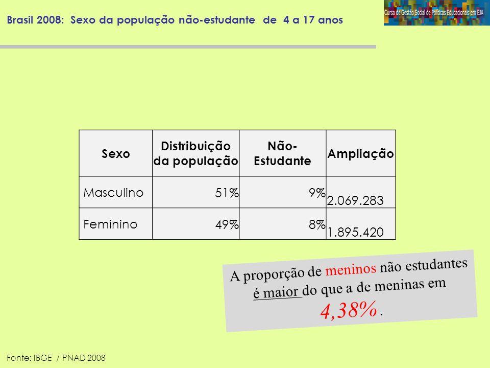 Brasil 2008: Sexo da população não-estudante de 4 a 17 anos Sexo Distribuição da população Não- Estudante Ampliação Masculino 51%9% 2.069.283 Feminino