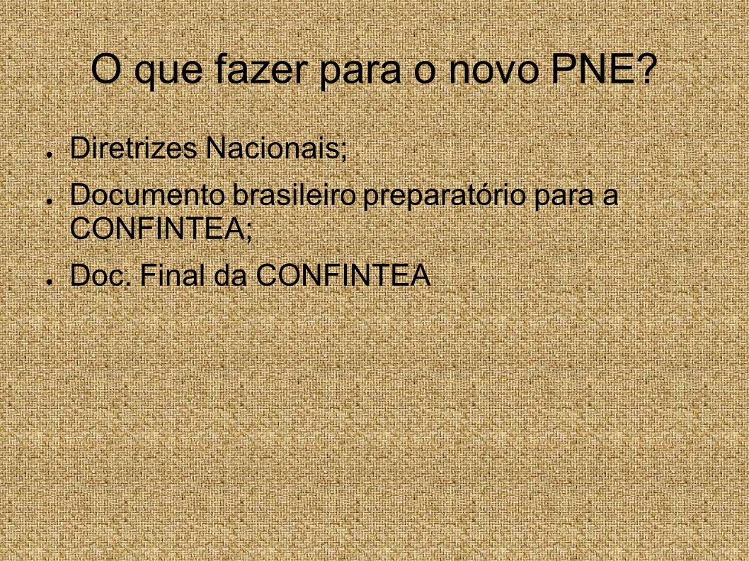 O que fazer para o novo PNE? Diretrizes Nacionais; Documento brasileiro preparatório para a CONFINTEA; Doc. Final da CONFINTEA
