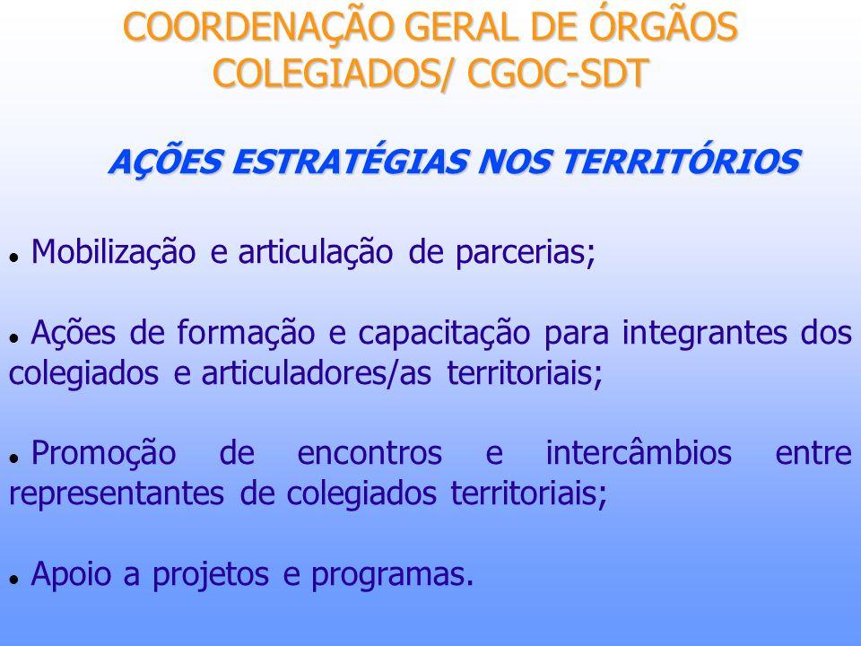 AÇÕES ESTRATÉGIAS NOS TERRITÓRIOS Mobilização e articulação de parcerias; Ações de formação e capacitação para integrantes dos colegiados e articulado