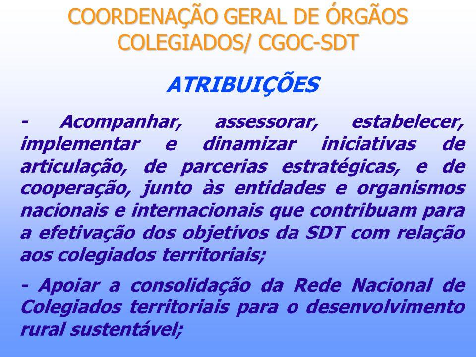 ATRIBUIÇÕES - Acompanhar, assessorar, estabelecer, implementar e dinamizar iniciativas de articulação, de parcerias estratégicas, e de cooperação, jun