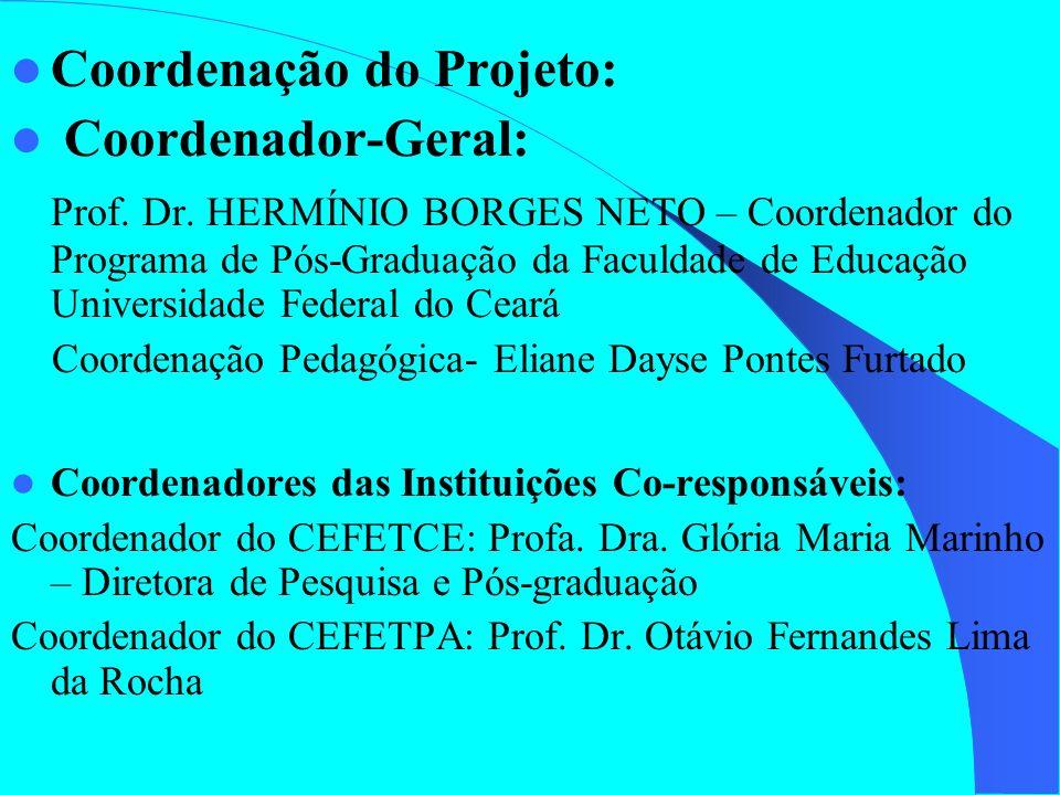 Coordenação do Projeto: Coordenador-Geral: Prof. Dr. HERMÍNIO BORGES NETO – Coordenador do Programa de Pós-Graduação da Faculdade de Educação Universi