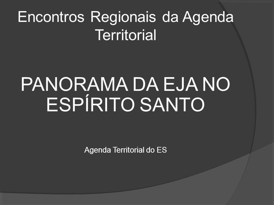 Encontros Regionais da Agenda Territorial PANORAMA DA EJA NO ESPÍRITO SANTO Agenda Territorial do ES