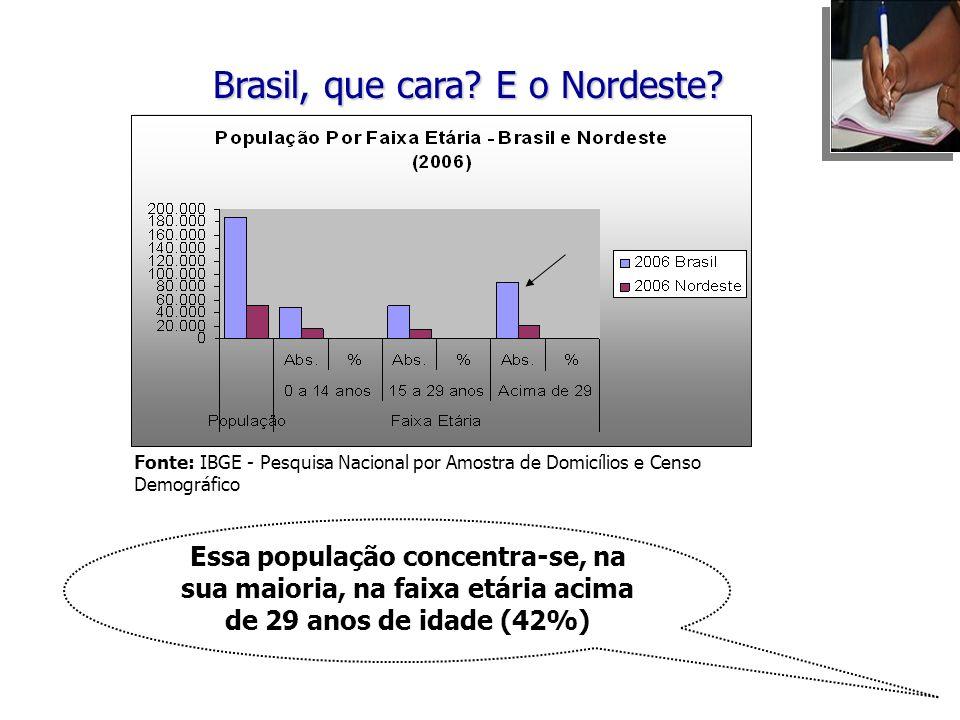 Essa população concentra-se, na sua maioria, na faixa etária acima de 29 anos de idade (42%) Brasil, que cara? E o Nordeste? Fonte: IBGE - Pesquisa Na