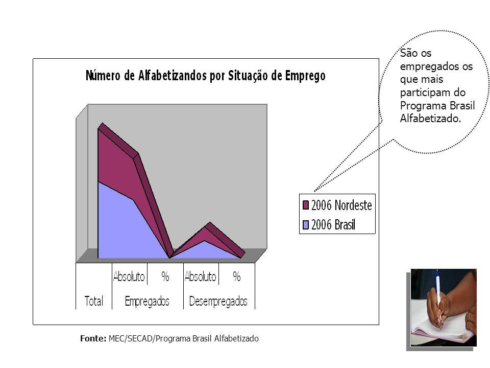 Fonte: MEC/SECAD/Programa Brasil Alfabetizado São os empregados os que mais participam do Programa Brasil Alfabetizado.