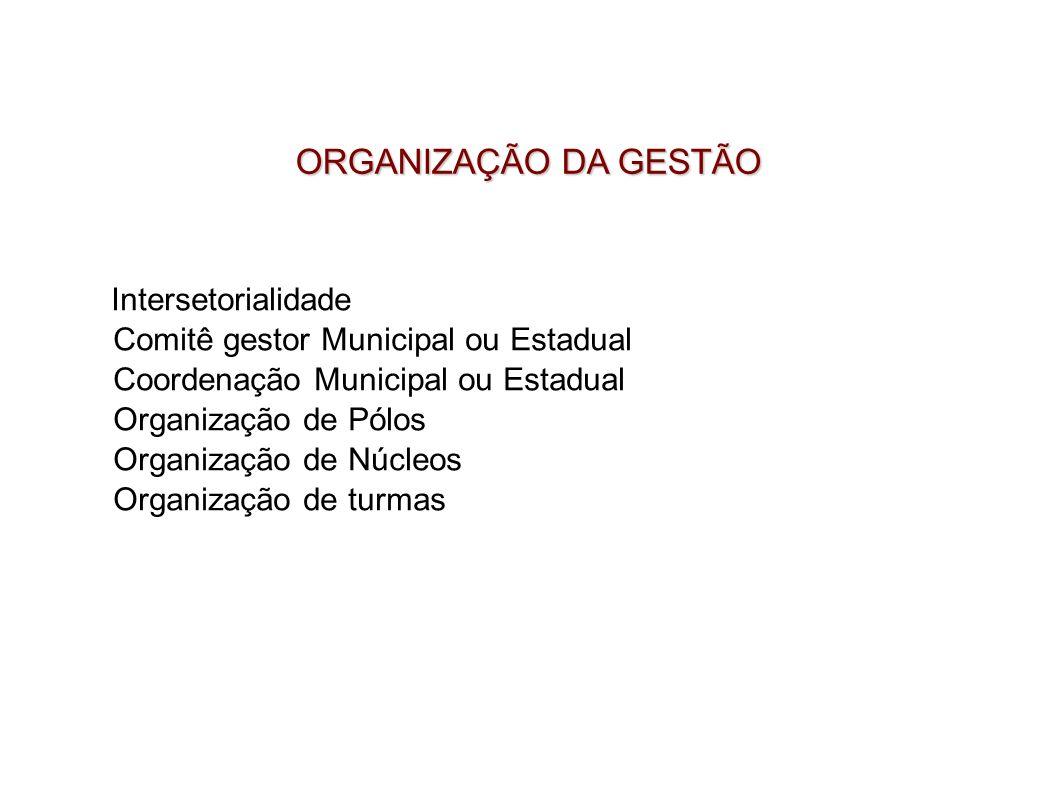 Intersetorialidade Comitê gestor Municipal ou Estadual Coordenação Municipal ou Estadual Organização de Pólos Organização de Núcleos Organização de tu