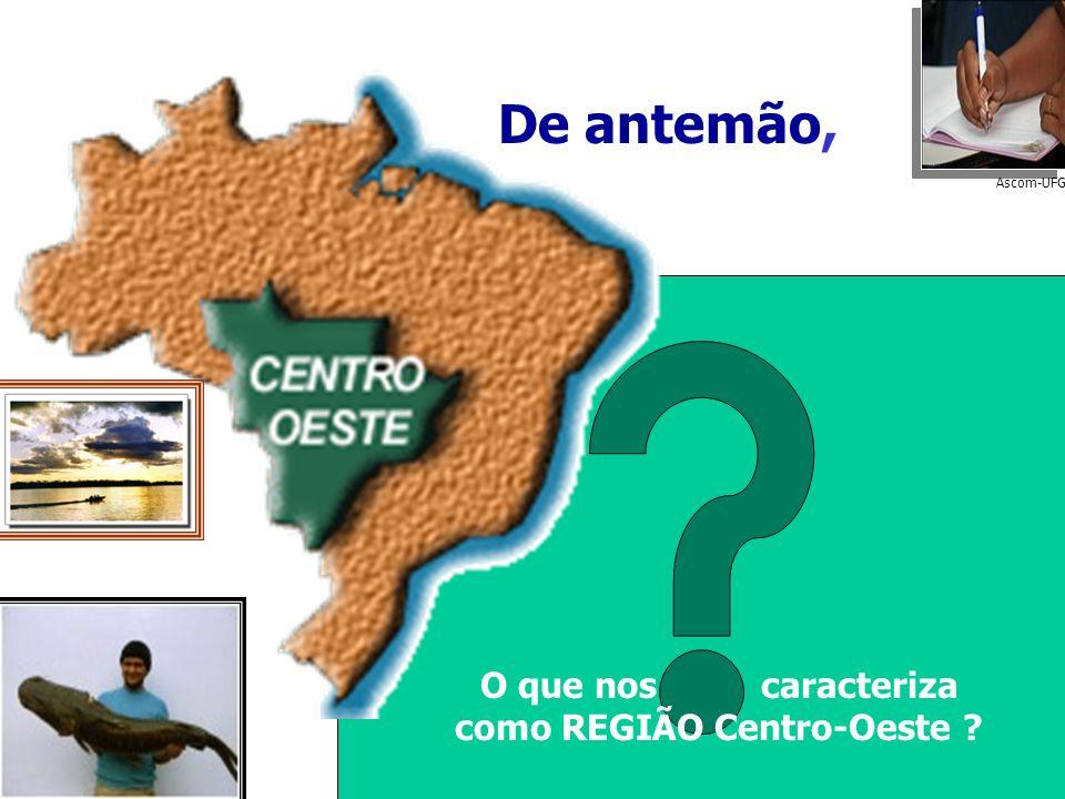 Divisão por Biomas* do Brasil Divisão político-administrativa da Região Centro-Oeste Mesmo espaço físico...
