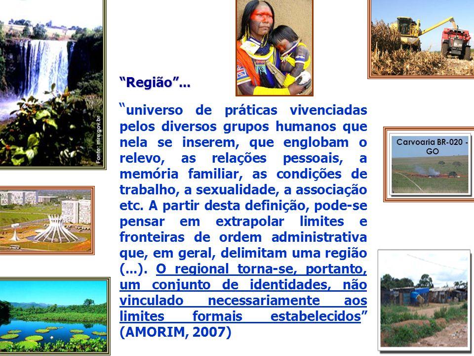 Área inundada na planície do Pantanal sul-mato-grossense Chapada Guimarães Bonito -MS Chapada veadeiros-GO Ascom-UFG