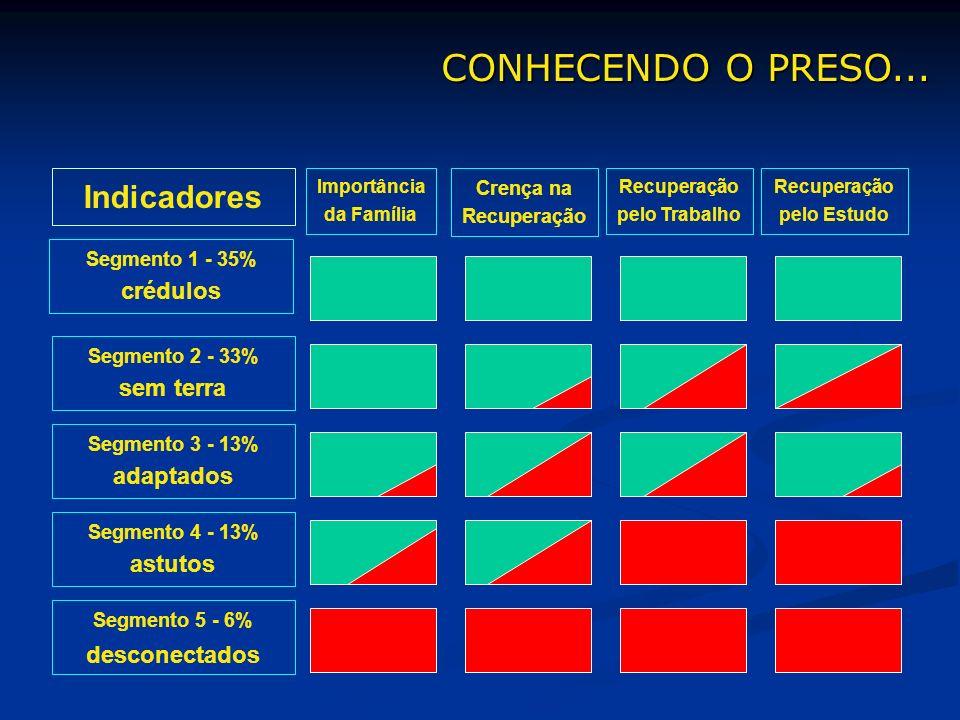Segmento 3 - 13% adaptados Importância da Família Segmento 2 - 33% sem terra Segmento 4 - 13% astutos Segmento 5 - 6% desconectados Recuperação pelo T