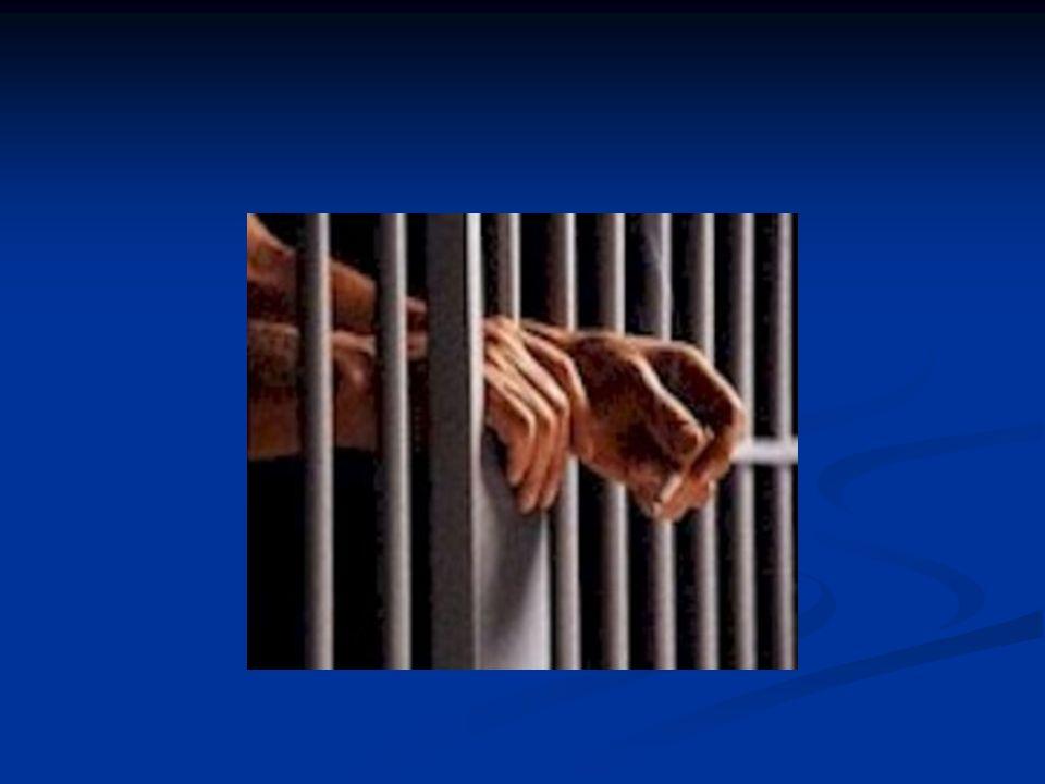 População carcerária: leitura e escrita (fonte INAF carcerário 2006) Analfabeto4% nível rudimentar 20% Nível básico 50% Nível pleno 26%