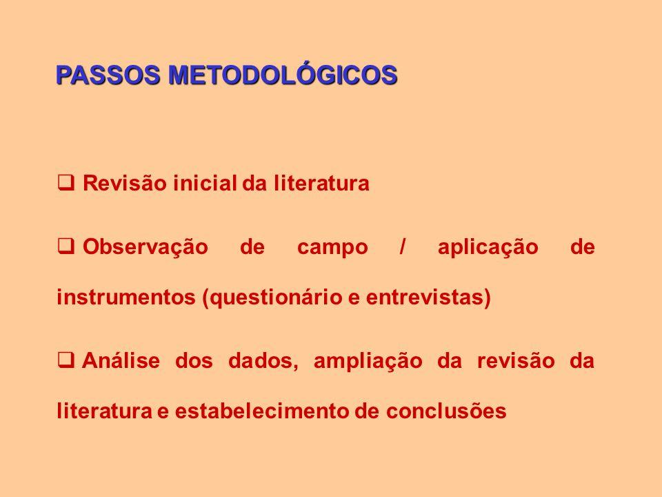 PASSOS METODOLÓGICOS Revisão inicial da literatura Observação de campo / aplicação de instrumentos (questionário e entrevistas) Análise dos dados, amp