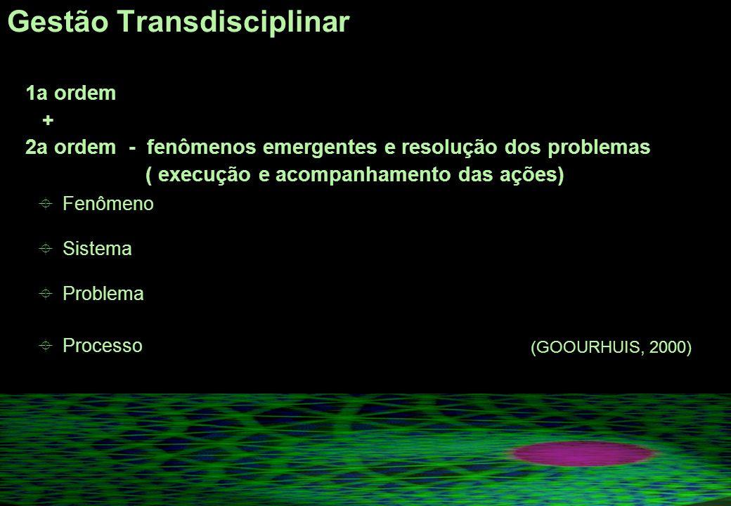 Gestão Transdisciplinar 1a ordem + 2a ordem - fenômenos emergentes e resolução dos problemas ( execução e acompanhamento das ações) Fenômeno Sistema Problema Processo (GOOURHUIS, 2000)