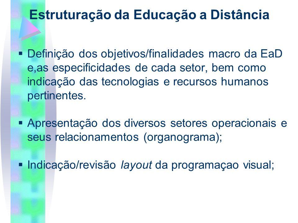 Definição dos objetivos/finalidades macro da EaD e,as especificidades de cada setor, bem como indicação das tecnologias e recursos humanos pertinentes.