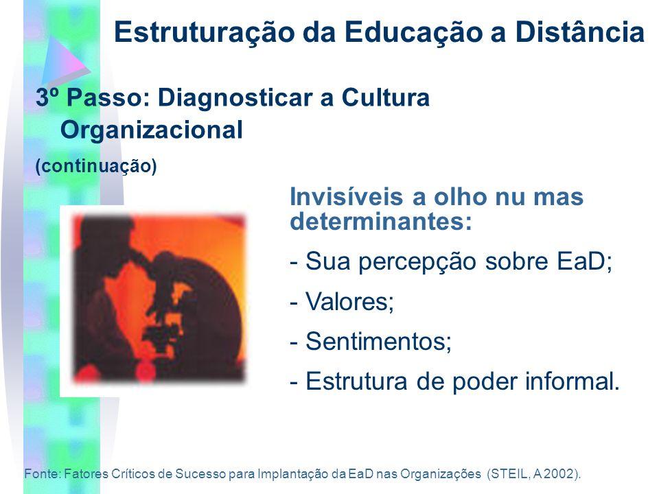 3º Passo: Diagnosticar a Cultura Organizacional (continuação) Estruturação da Educação a Distância Invisíveis a olho nu mas determinantes: - Sua percepção sobre EaD; - Valores; - Sentimentos; - Estrutura de poder informal.