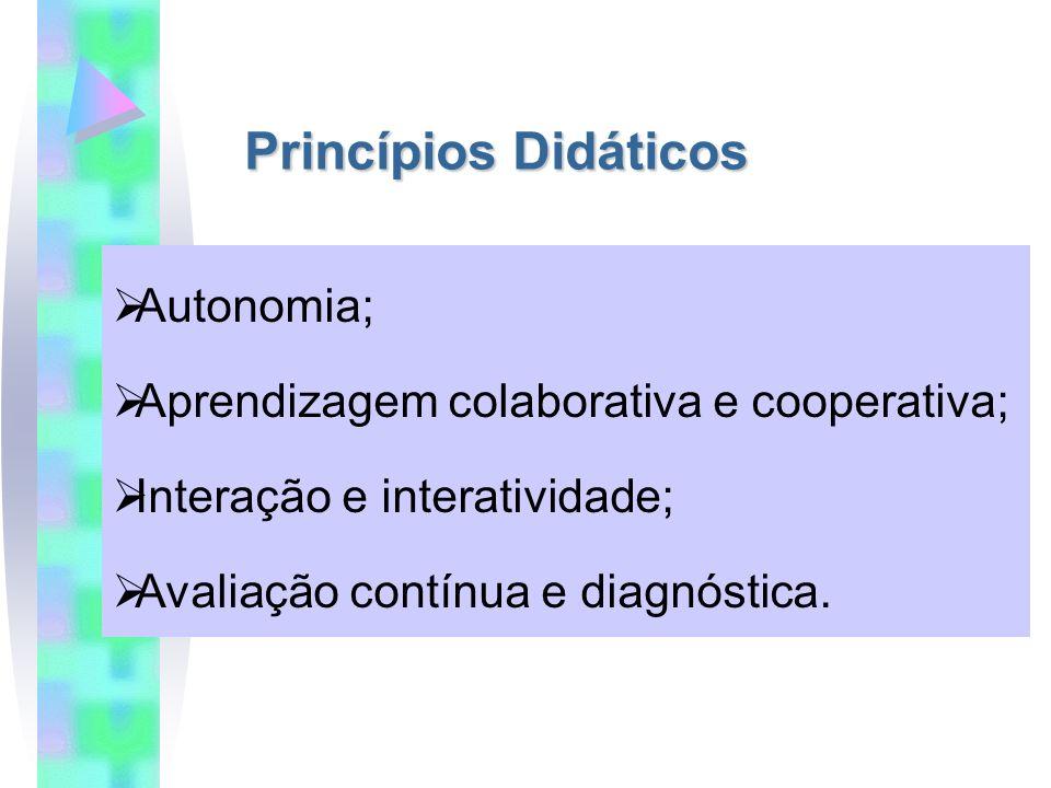 Princípios Didáticos Autonomia; Aprendizagem colaborativa e cooperativa; Interação e interatividade; Avaliação contínua e diagnóstica.