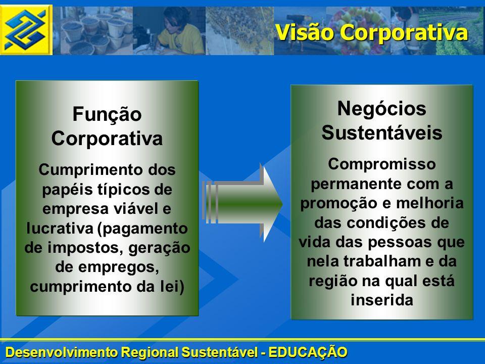 Desenvolvimento Regional Sustentável - EDUCAÇÃO Visão Corporativa Função Corporativa Cumprimento dos papéis típicos de empresa viável e lucrativa (pag