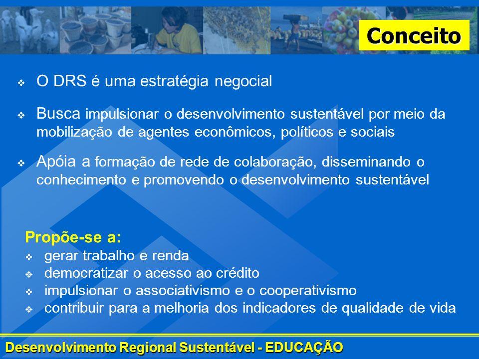 Desenvolvimento Regional Sustentável - EDUCAÇÃO Conceito Busca impulsionar o desenvolvimento sustentável por meio da mobilização de agentes econômicos