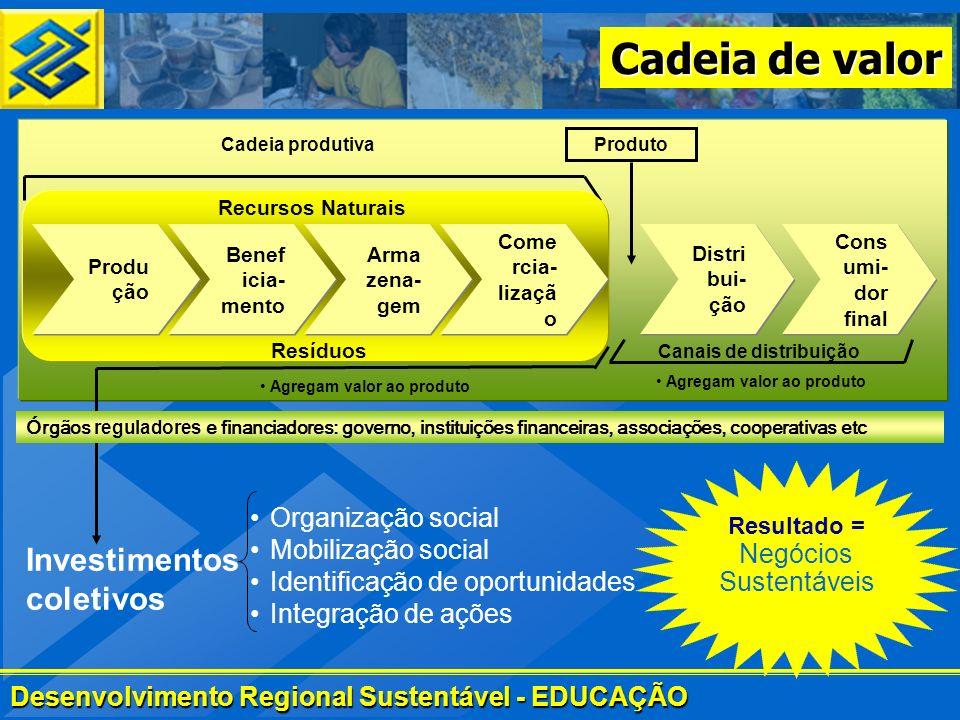 Desenvolvimento Regional Sustentável - EDUCAÇÃO Cadeia de valor Investimentos coletivos Organização social Mobilização social Identificação de oportun