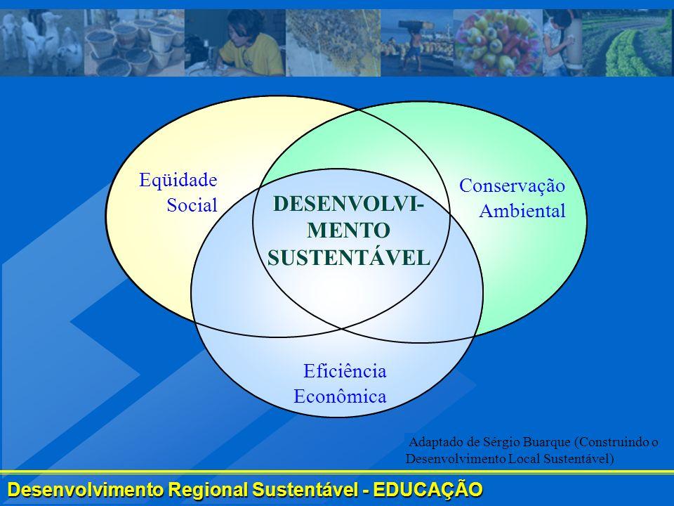 Desenvolvimento Regional Sustentável - EDUCAÇÃO Eqüidade Social Conservação Ambiental Eficiência Econômica DESENVOLVI- MENTO SUSTENTÁVEL Adaptado de S