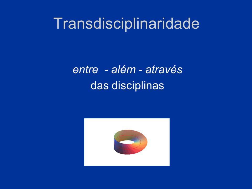 Transdisciplinaridade entre - além - através das disciplinas
