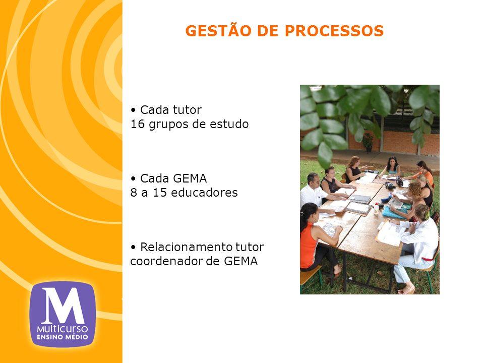 Cada tutor 16 grupos de estudo Cada GEMA 8 a 15 educadores Relacionamento tutor coordenador de GEMA GESTÃO DE PROCESSOS