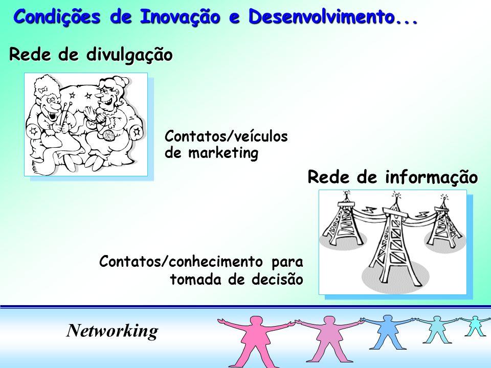 Networking Rede de divulgação Contatos/veículos de marketing Rede de informação Contatos/conhecimento para tomada de decisão tomada de decisão Condições de Inovação e Desenvolvimento...