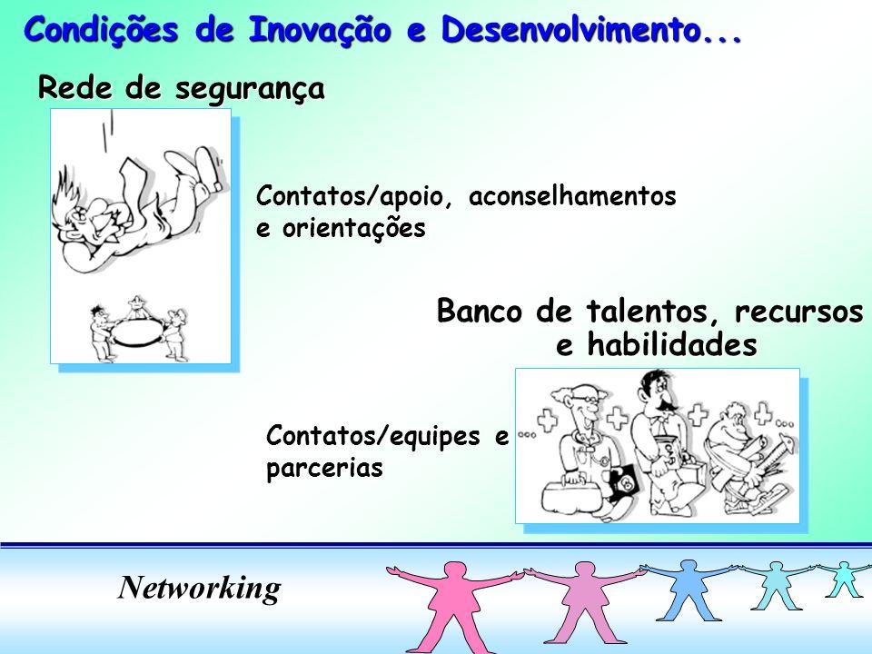 Networking Rede de segurança Contatos/apoio, aconselhamentos e orientações Banco de talentos, recursos e habilidades e habilidades Contatos/equipes e parcerias Condições de Inovação e Desenvolvimento...