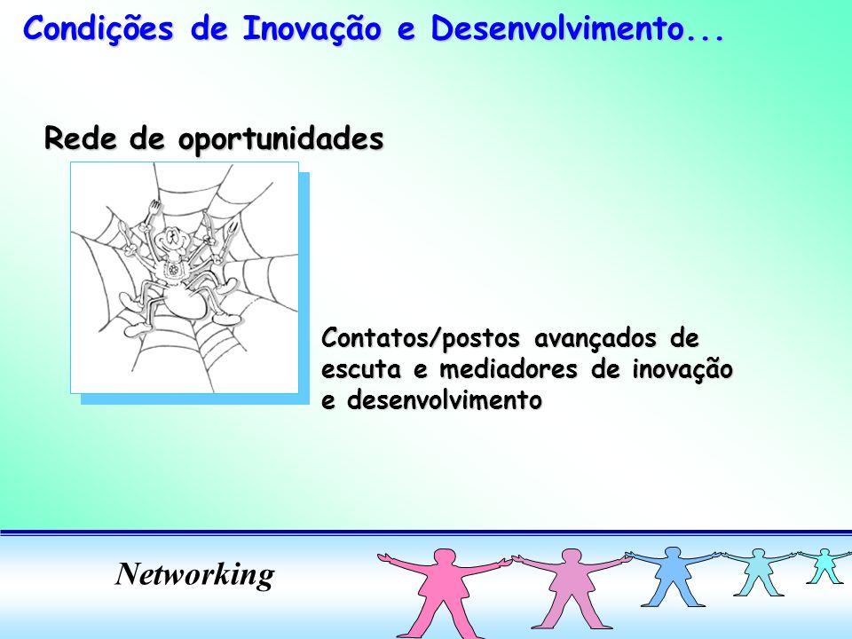 Networking Rede de oportunidades Contatos/postos avançados de escuta e mediadores de inovação e desenvolvimento Condições de Inovação e Desenvolvimento...