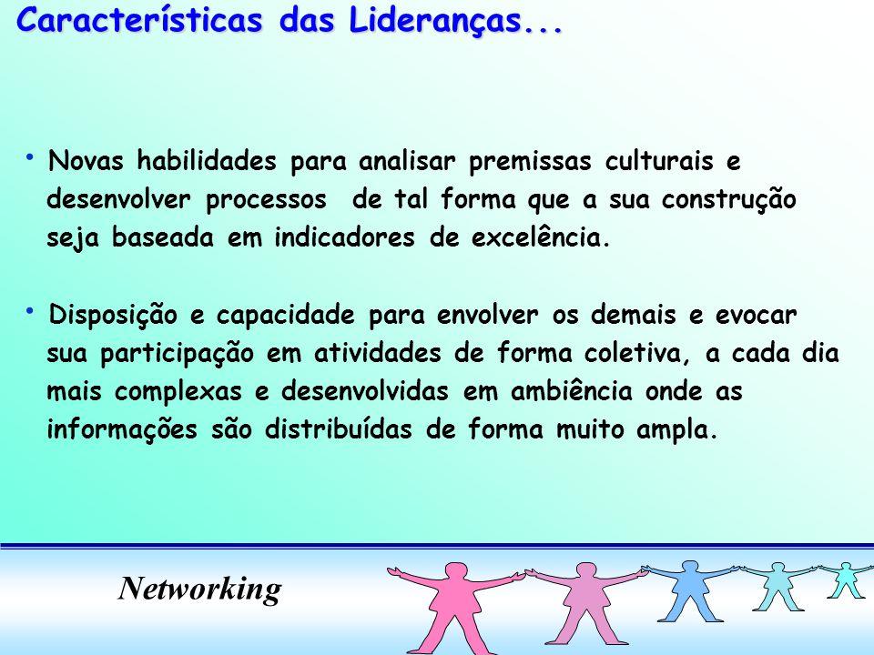 Networking Novas habilidades para analisar premissas culturais e desenvolver processos de tal forma que a sua construção seja baseada em indicadores d