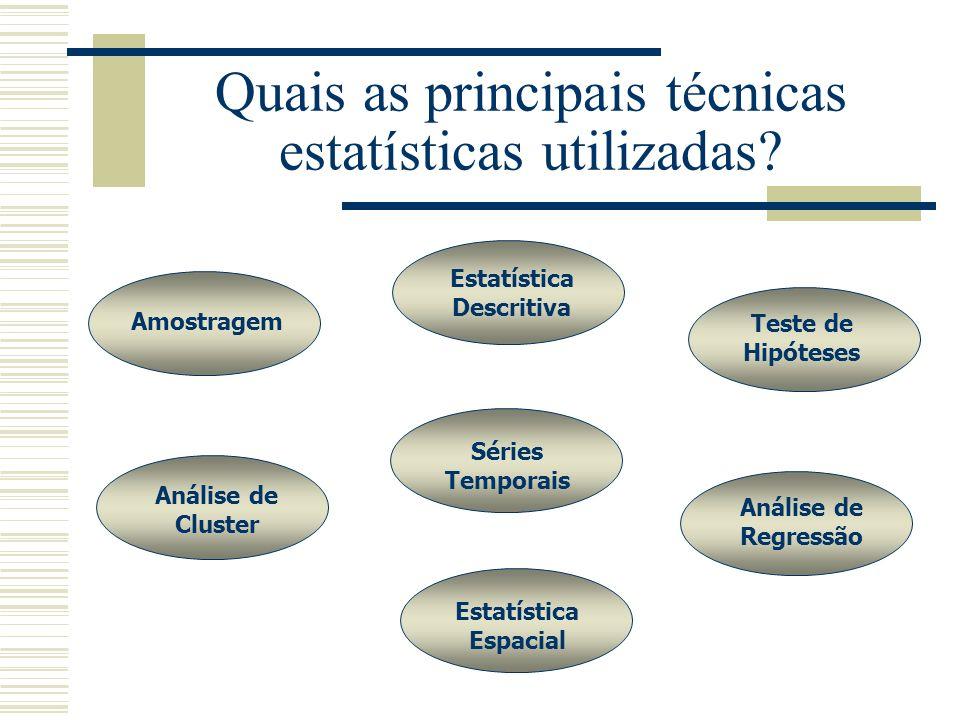 Quais as principais técnicas estatísticas utilizadas? Amostragem Estatística Descritiva Teste de Hipóteses Análise de Cluster Estatística Espacial Aná