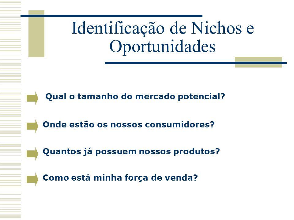 Identificação de Nichos e Oportunidades Qual o tamanho do mercado potencial? Onde estão os nossos consumidores? Como está minha força de venda? Quanto
