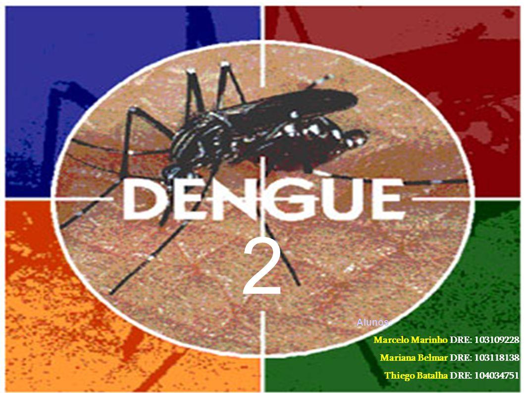 Introdução A dengue é uma doença infecciosa aguda de curta duração, que possui gravidade variável, podendo inclusive, em alguns casos, levar à morte.