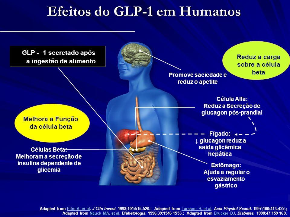 Efeitos do GLP-1 em Humanos Promove saciedade e reduz o apetite Células Beta: Melhoram a secreção de insulina dependente de glicemia Adapted from Flin