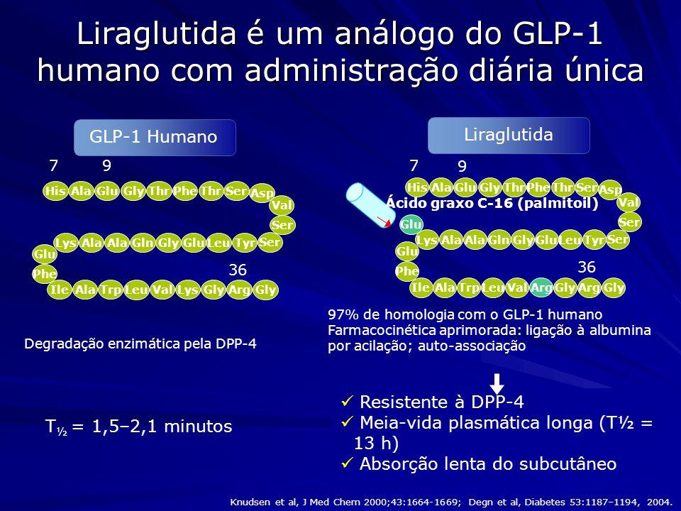 Liraglutida é um análogo do GLP-1 humano com administração diária única 7 36 9 Lys HisAlaThr Ser PheGluGly Asp Val Ser TyrLeuGluGlyAla GlnLys Phe Glu