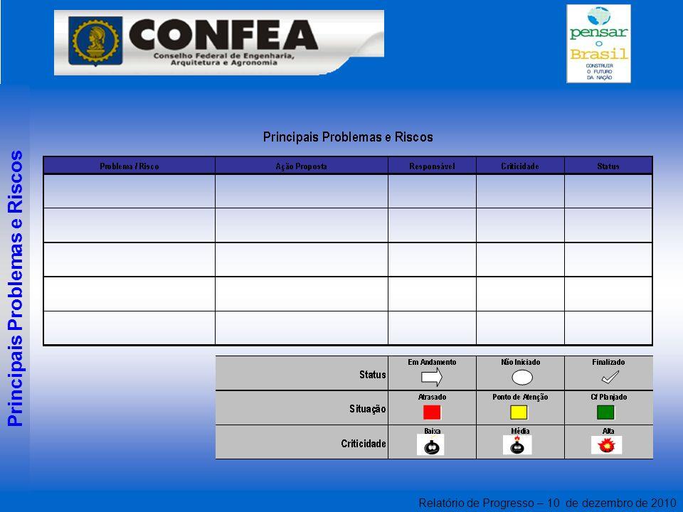 Relatório de Progresso – 10 de dezembro de 2010 Principais Problemas e Riscos