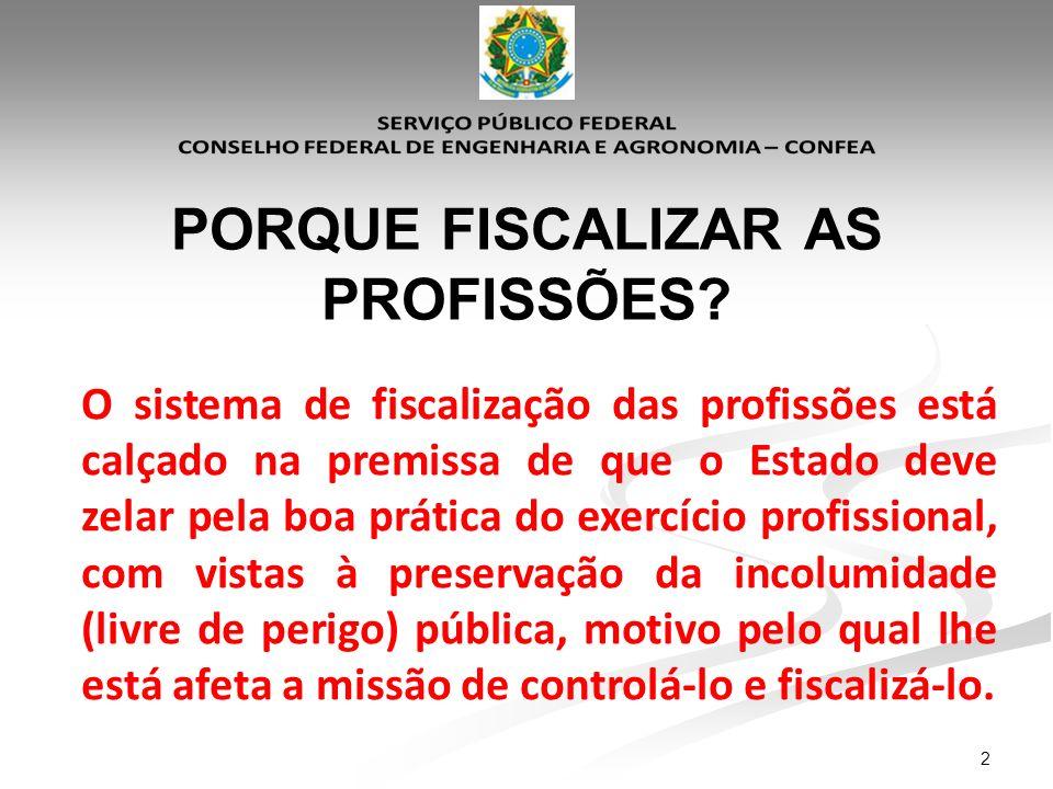 13 - Objetivo Específico: Elaboração de diretrizes específicas para a fiscalização de profissionais estrangeiros.