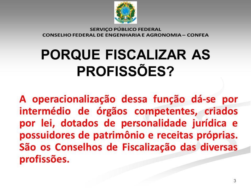 24 Diretrizes Nacionais da Fiscalização do Exercício e da Atividade Profissional do Sistema Confea/Crea Parágrafo único do Artigo 1°.