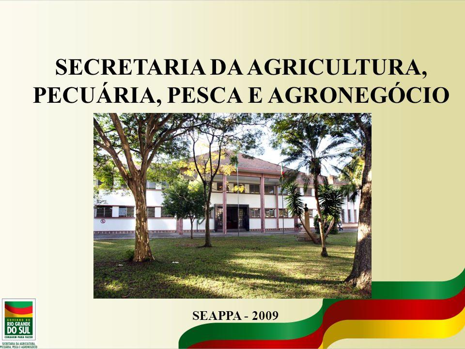 SECRETARIA DA AGRICULTURA, PECUÁRIA, PESCA E AGRONEGÓCIO FEDERASUL- 2009 Importância do Agronegócio no RS e Perspectivas para 2010