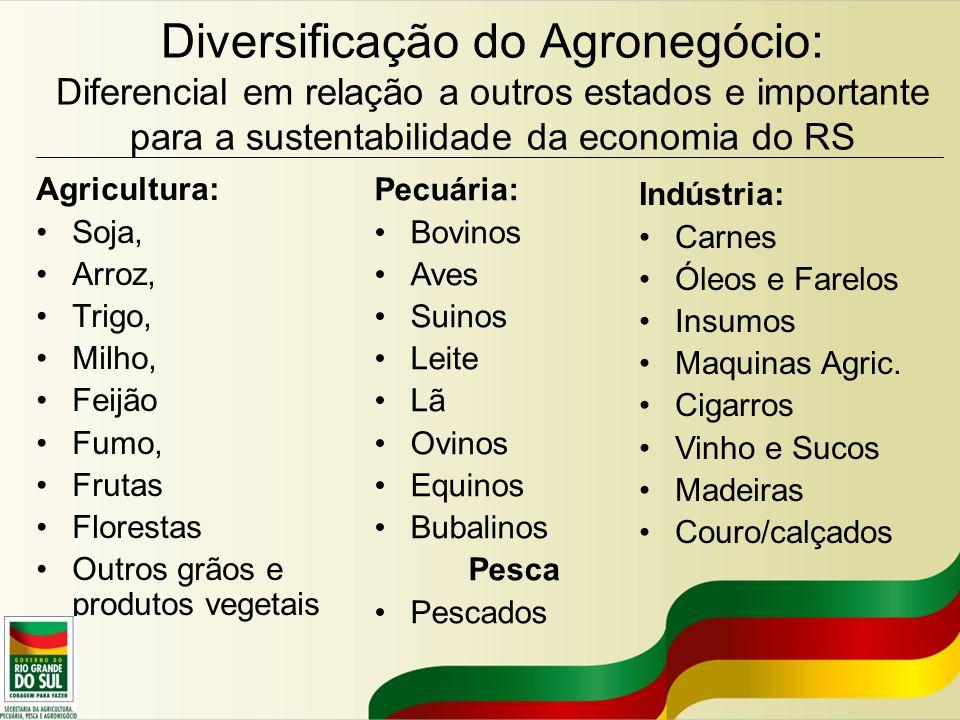 Diversificação do Agronegócio: Diferencial em relação a outros estados e importante para a sustentabilidade da economia do RS Agricultura: Soja, Arroz