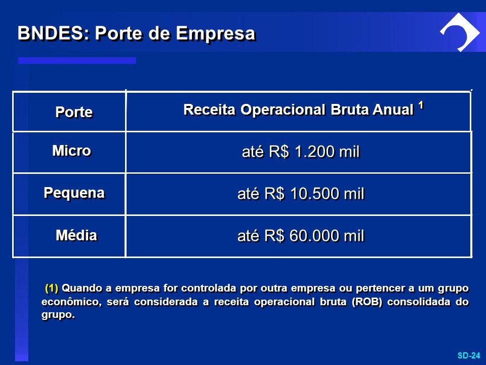 SD-24 (1) Quando a empresa for controlada por outra empresa ou pertencer a um grupo econômico, será considerada a receita operacional bruta (ROB) cons