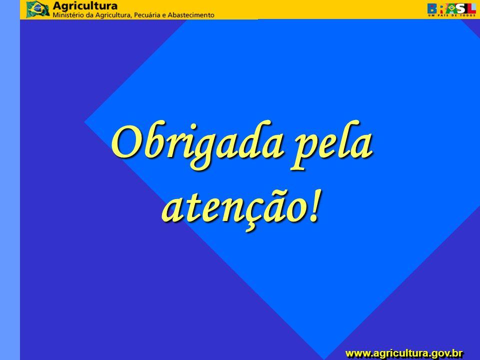 www.agricultura.gov.brwww.agricultura.gov.br Obrigada pela atenção!
