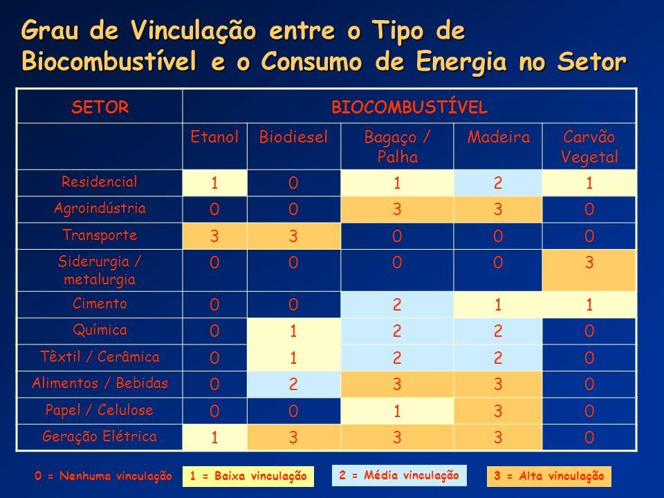 SETORBIOCOMBUSTÍVEL EtanolBiodieselBagaço / Palha MadeiraCarvão Vegetal Residencial 10121 Agroindústria 00330 Transporte 33000 Siderurgia / metalurgia