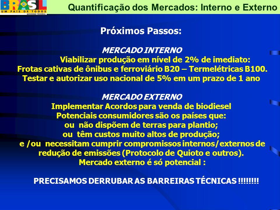 Próximos Passos: MERCADO INTERNO Viabilizar produção em nível de 2% de imediato: Frotas cativas de ônibus e ferroviário B20 – Termelétricas B100. Test