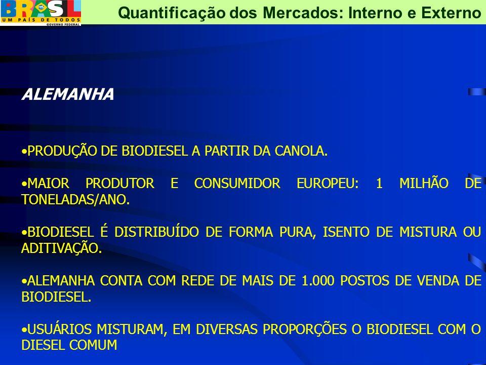 Capacidade de Produção 2005: 50 Mil m3 2006:426 Mil m3 Autorizações concedidas pela ANP: Brasil Biodiesel Comércio e Indústria de Óleos Vegetais; Soy-Minas Biodiesel Derivados de Vegetais Ltda.