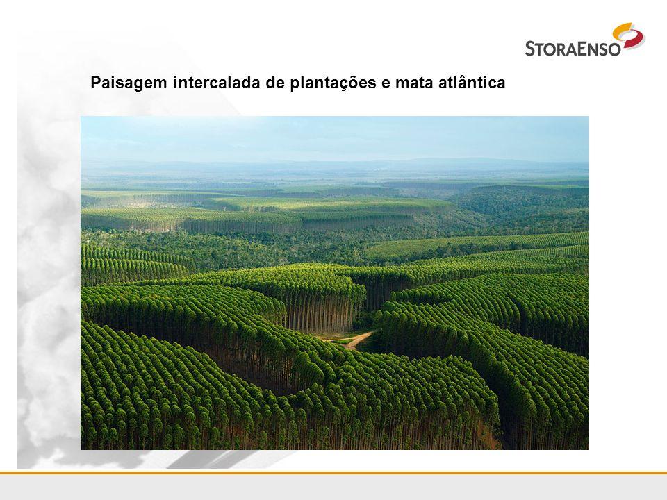 Projeto Rio Grande do Sul