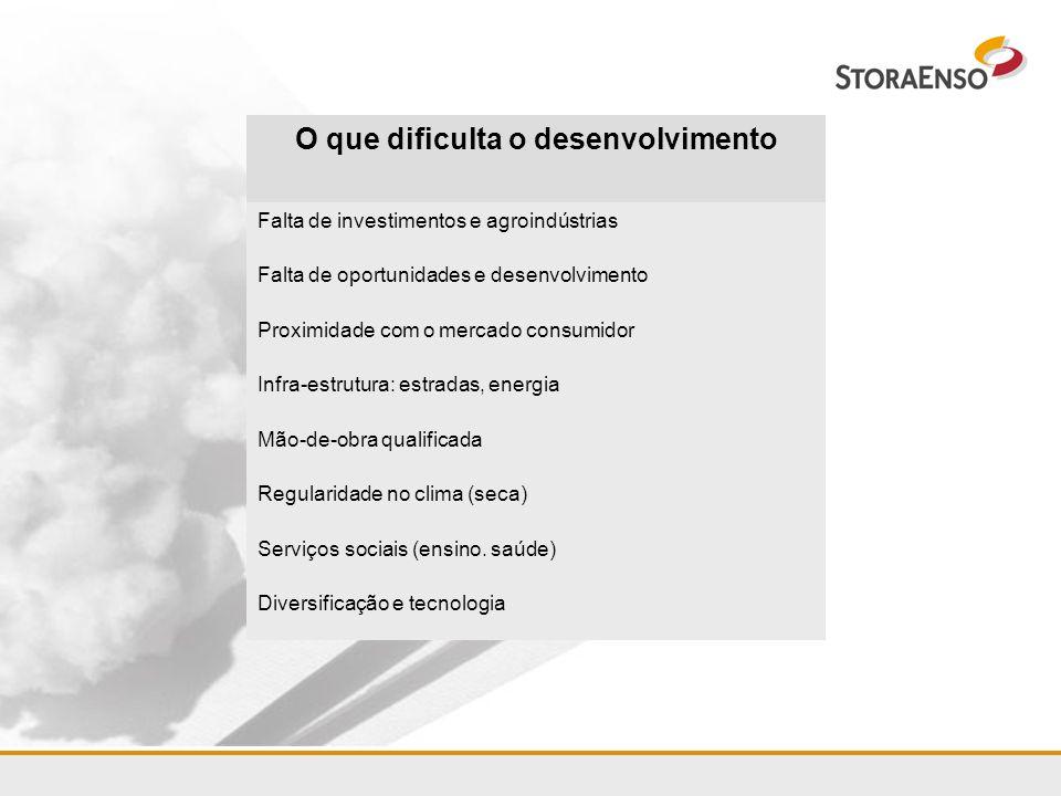 Diversificação e tecnologia Serviços sociais (ensino. saúde) Regularidade no clima (seca) Mão-de-obra qualificada Infra-estrutura: estradas, energia P