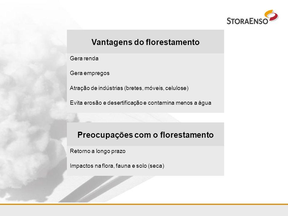 Projeto Rio Grande do Sul 2006 Dois escritórios (Porto Alegre e Rosário do Sul) Formação da equipe Início do plantio experimental desejado: terceiro trimestre 2006 (depende de zoneamento economico-ecológico e de licenciamento) Modelo de plantio 1/3 preservação + 2/3 florestamento Plantação mosaico Convivência com culturais locais/tradicionais Ausência de plantios maciços