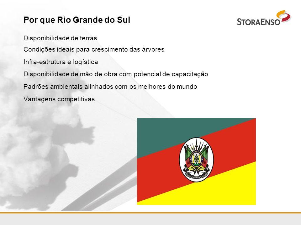 Por que Rio Grande do Sul Disponibilidade de terras Condições ideais para crescimento das árvores Infra-estrutura e logística Disponibilidade de mão d
