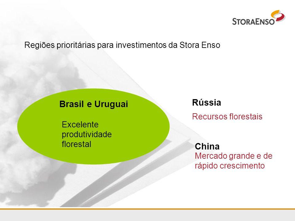 Regiões prioritárias para investimentos da Stora Enso Brasil e Uruguai Excelente produtividade florestal Mercado grande e de rápido crescimento Recurs